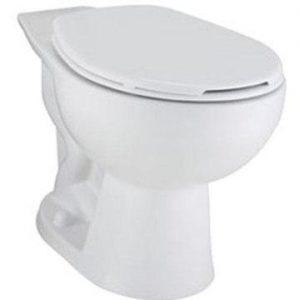 Flush Valve Toilet
