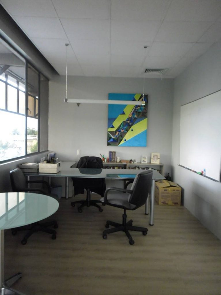 Office Space Built with PalmEcoBoards